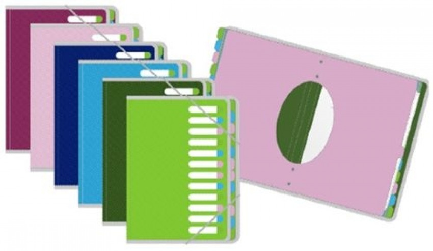 Caja 10 carpeta clasificadora a4 con 12 separadores de polipropileno pop gear arts 1697294301204