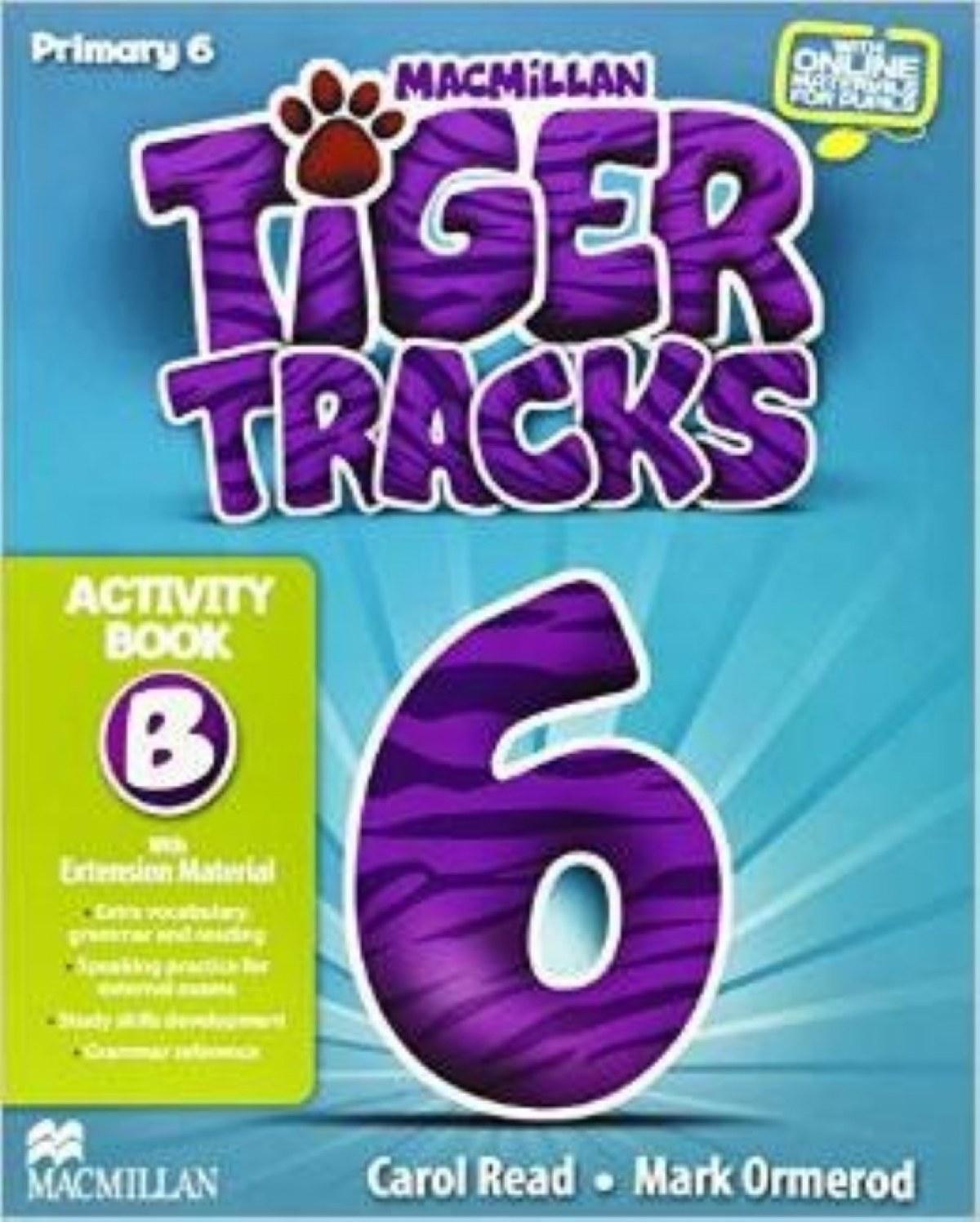 Tiger 6 *B* activity pack 9780230453647