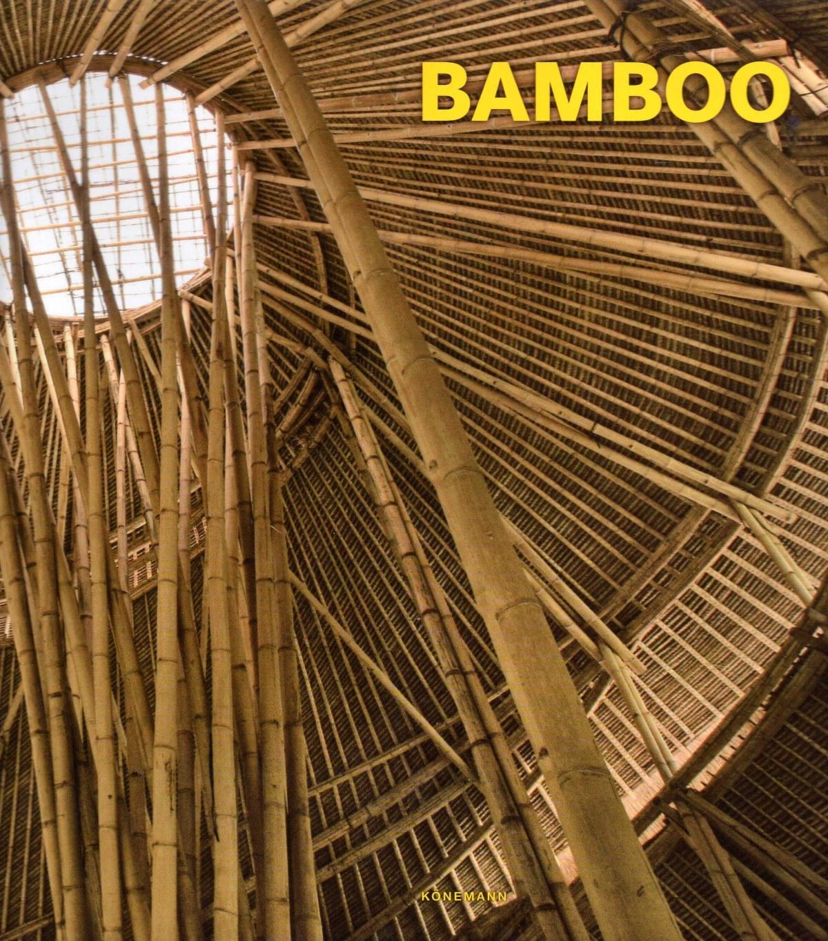 BAMBOO 9783741914003