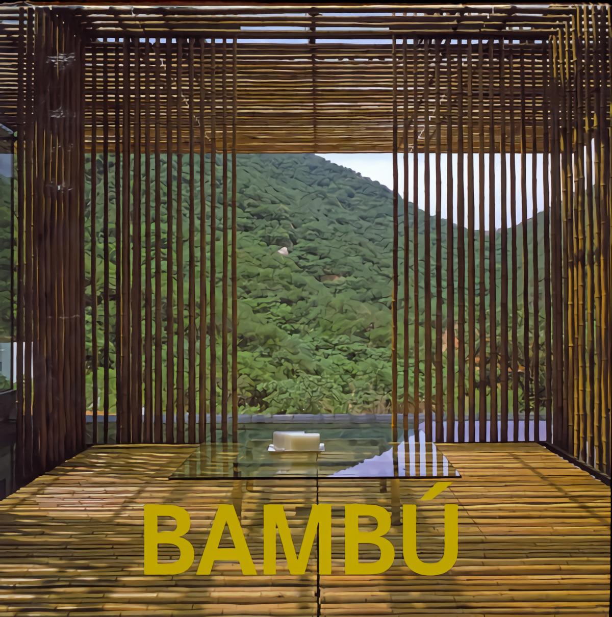 BAMBU 9783864073649
