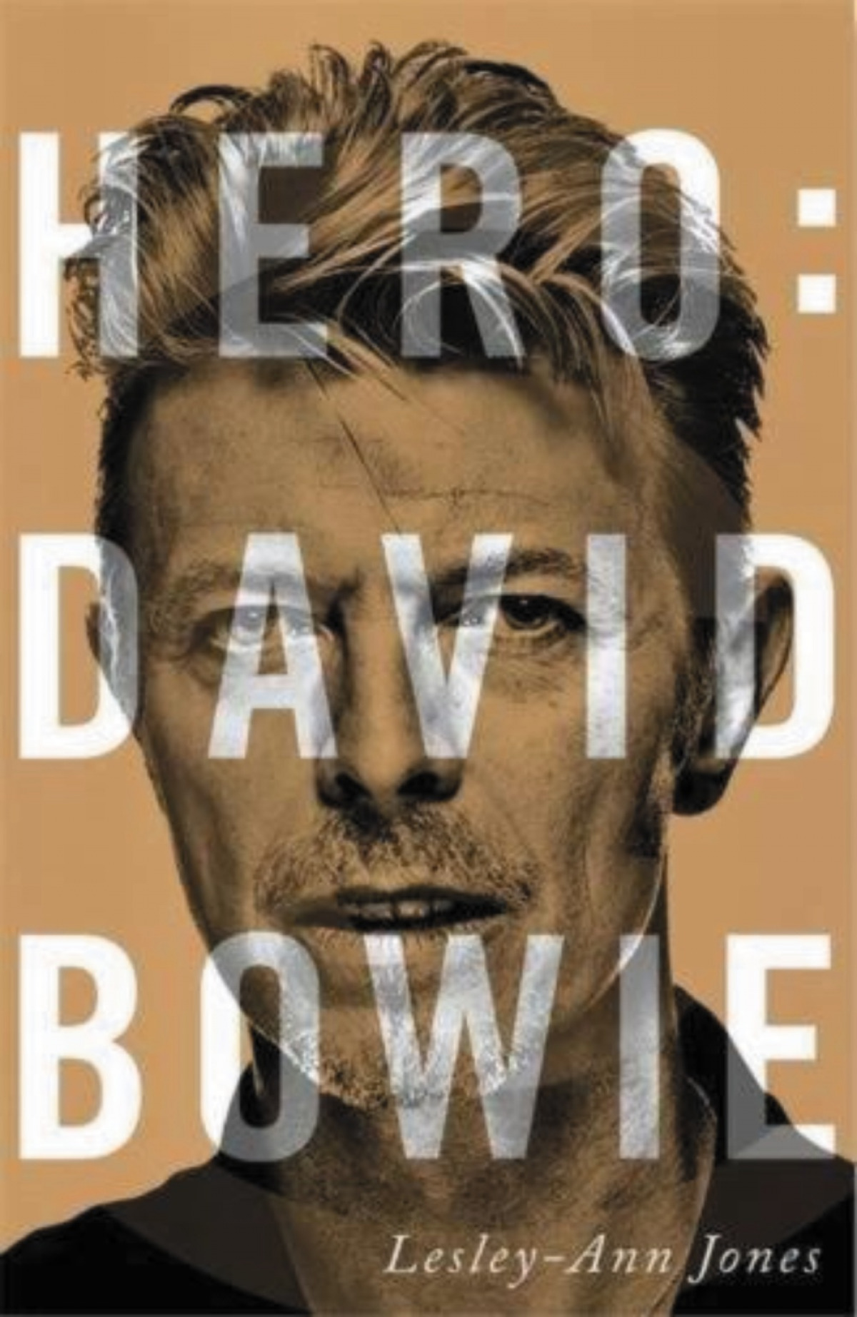 Hero: David Bowie 9788413622668