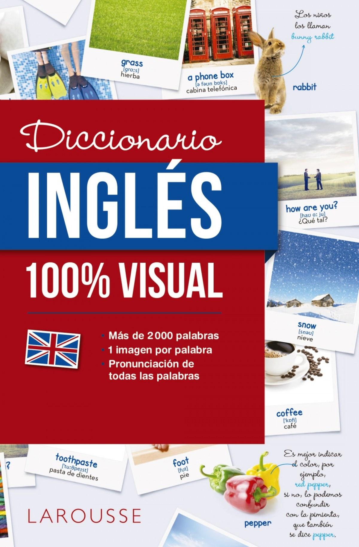 DICCIONARIO DE INGLéS 100% VISUAL 9788416641772