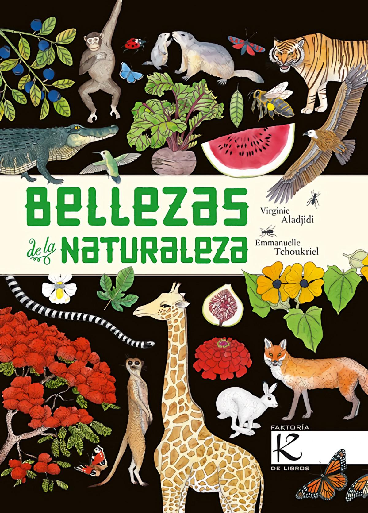 BELLEZAS DE LA NATURALEZA 9788416721474
