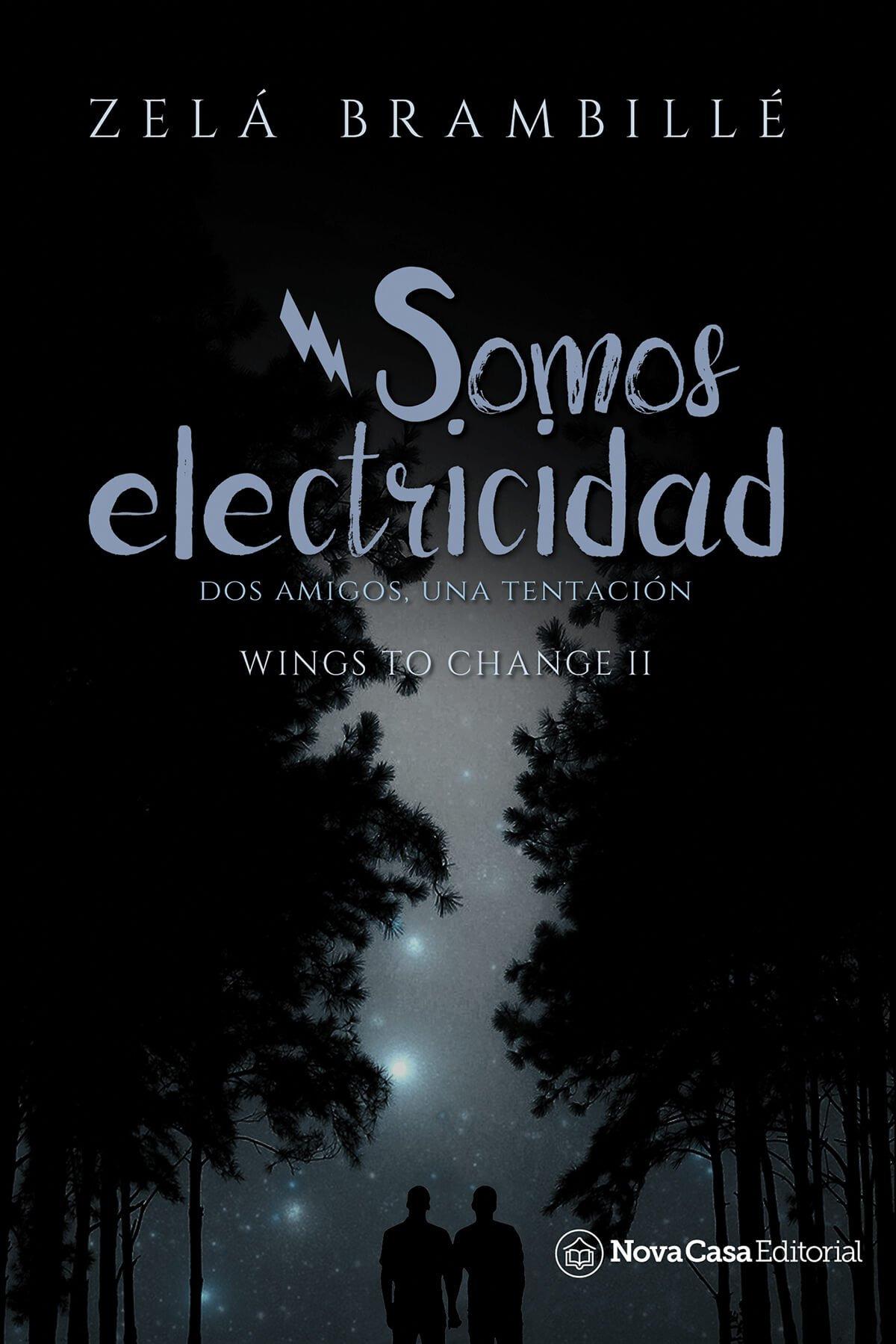 SOMOS ELECTRICIDAD 9788417142117