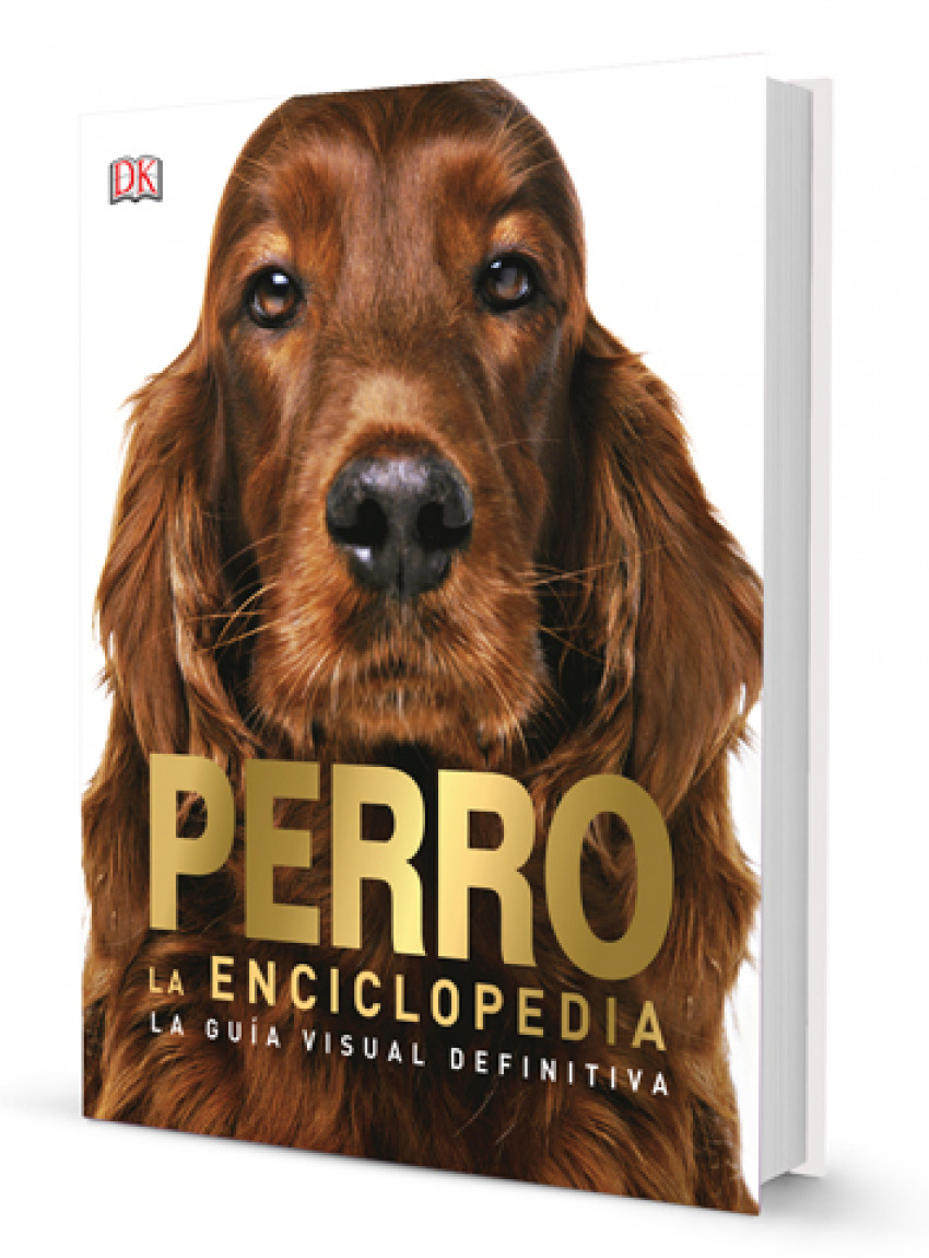 PERRO 9788417452131