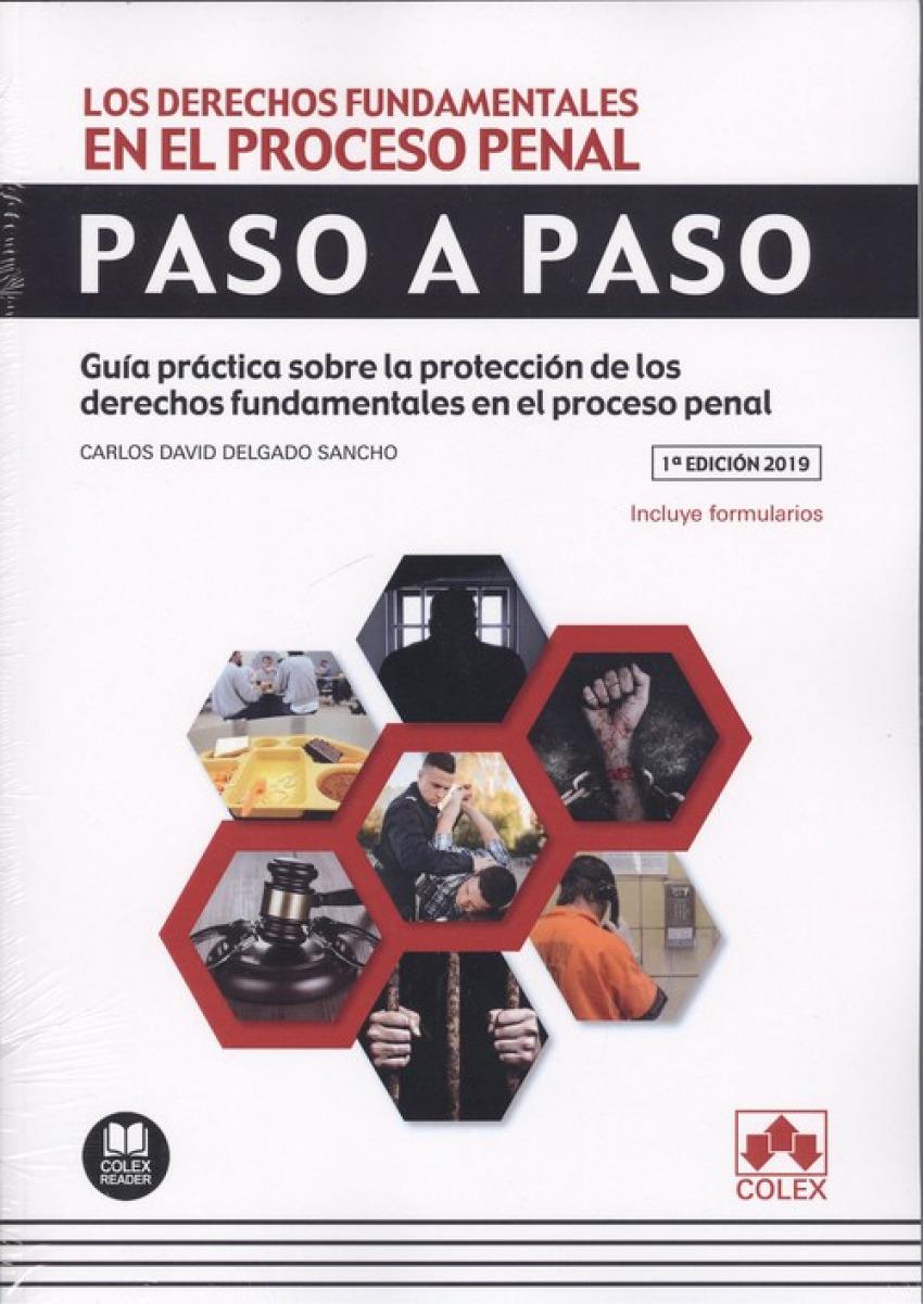 LOS DERECHOS FUNDAMENTALES EN EL PROCESO PENAL.PASO A PASO 9788417618391