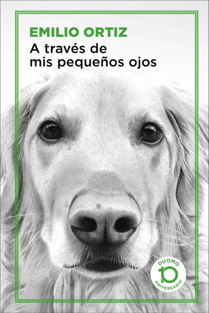 A TRAVÉS DE MIS PEQUEñOS OJOS 9788417761042