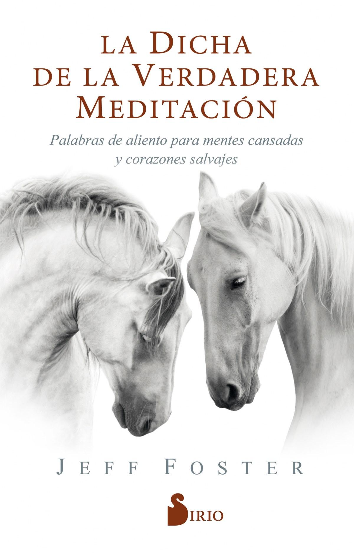 La dicha de la verdadera meditación 9788418000522