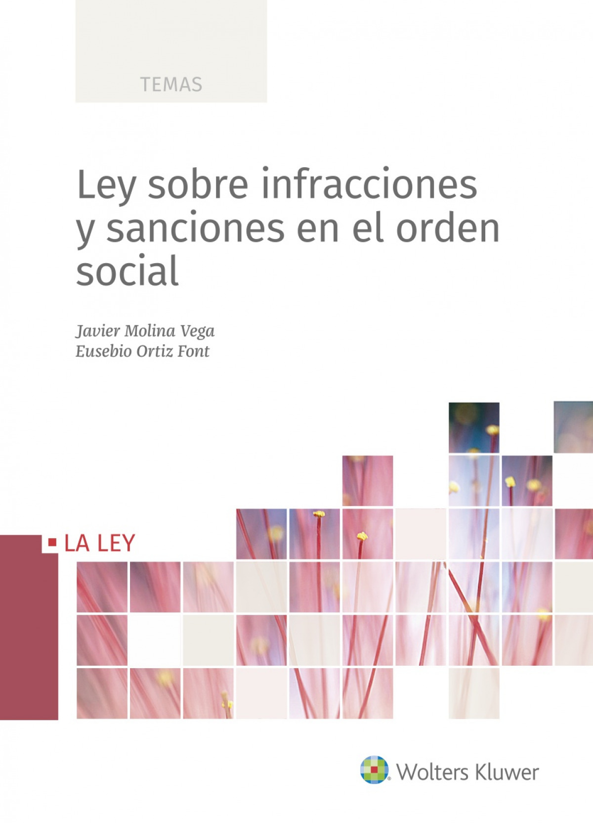 Ley sobre infracciones y sanciones en el orden social 9788418349249