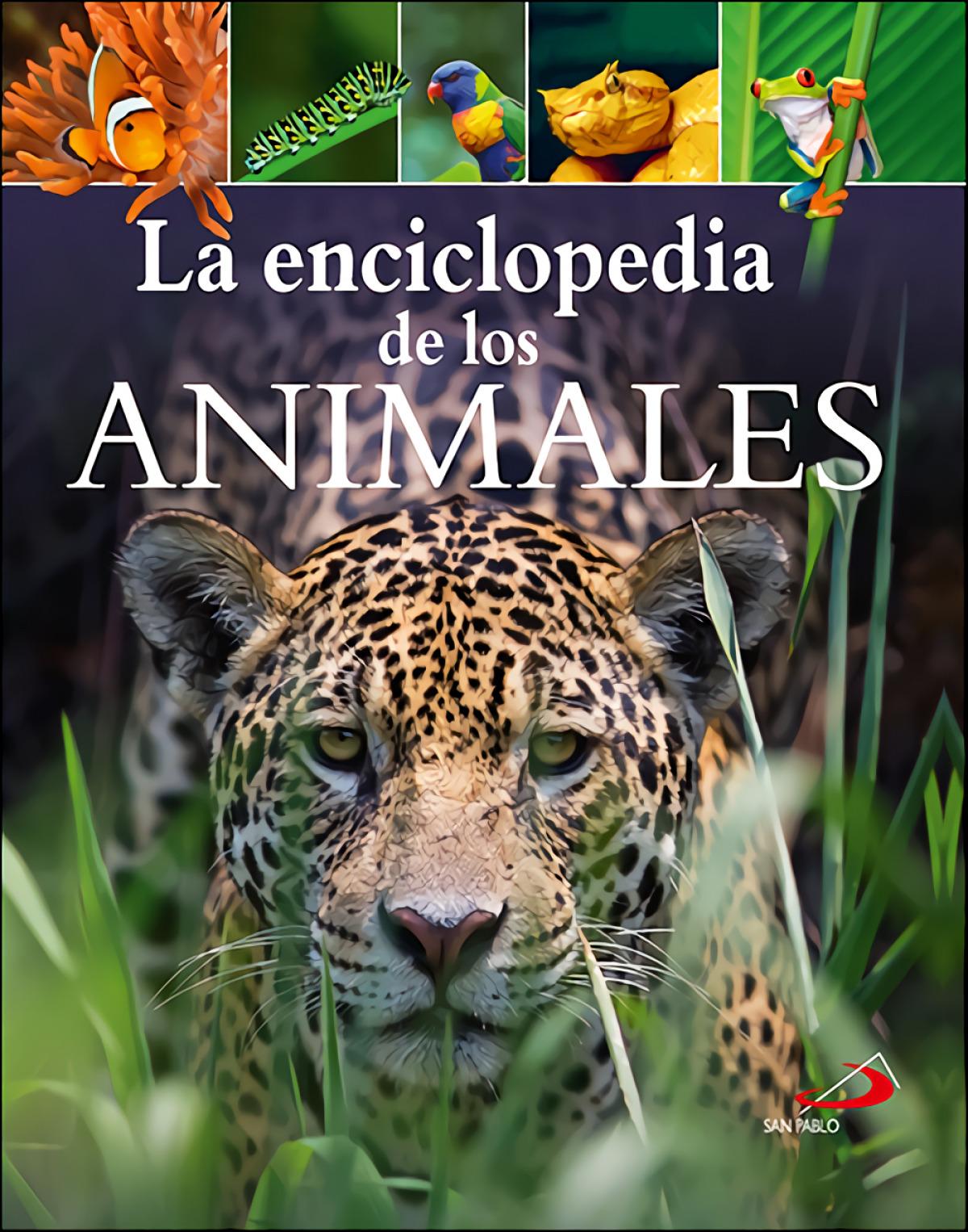 LA ENCICLOPEDIA DE LOS ANIMALES 9788428557511