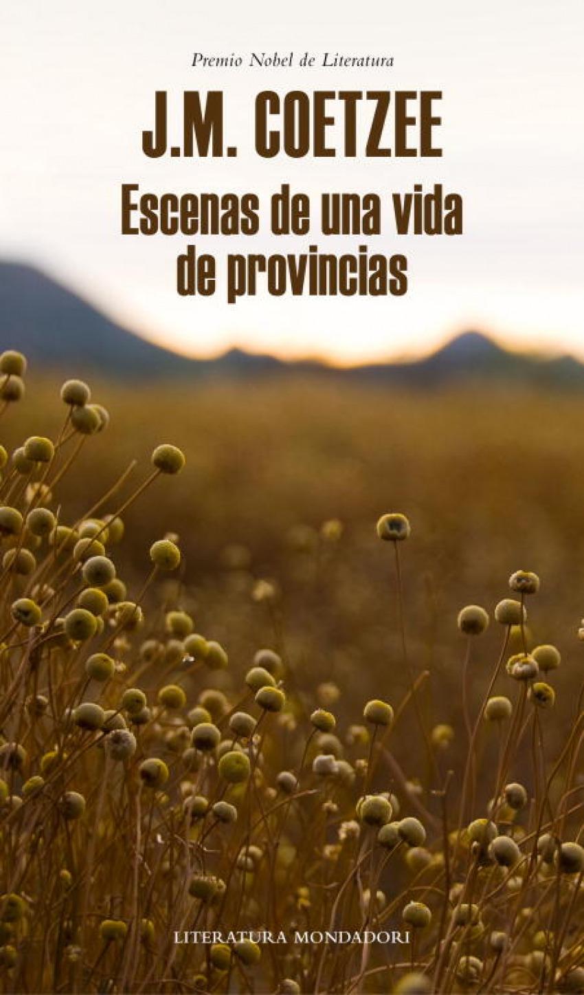 Escenas de una vida de provincias 9788439726401