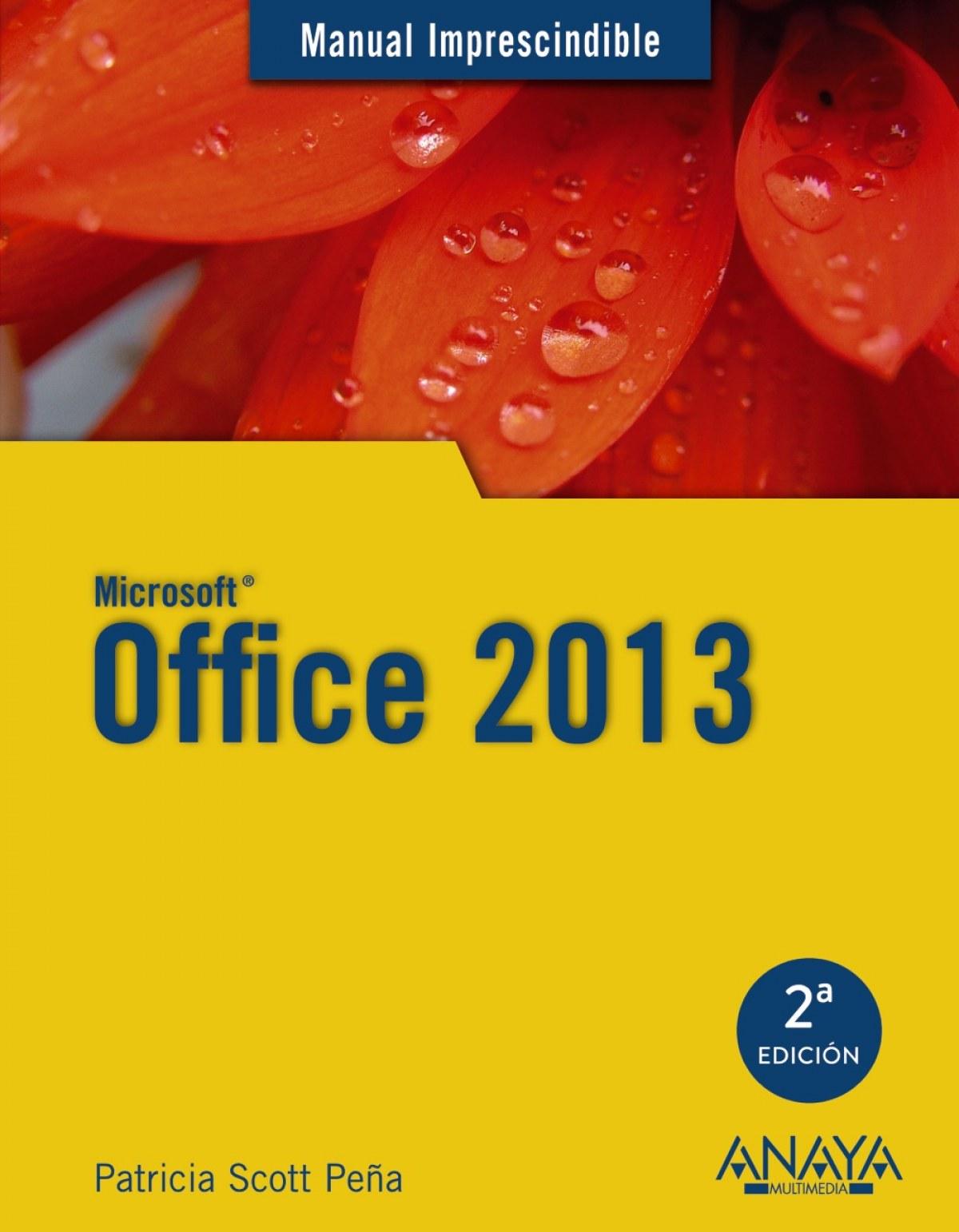 Microsoft Office 2013 9788441534179