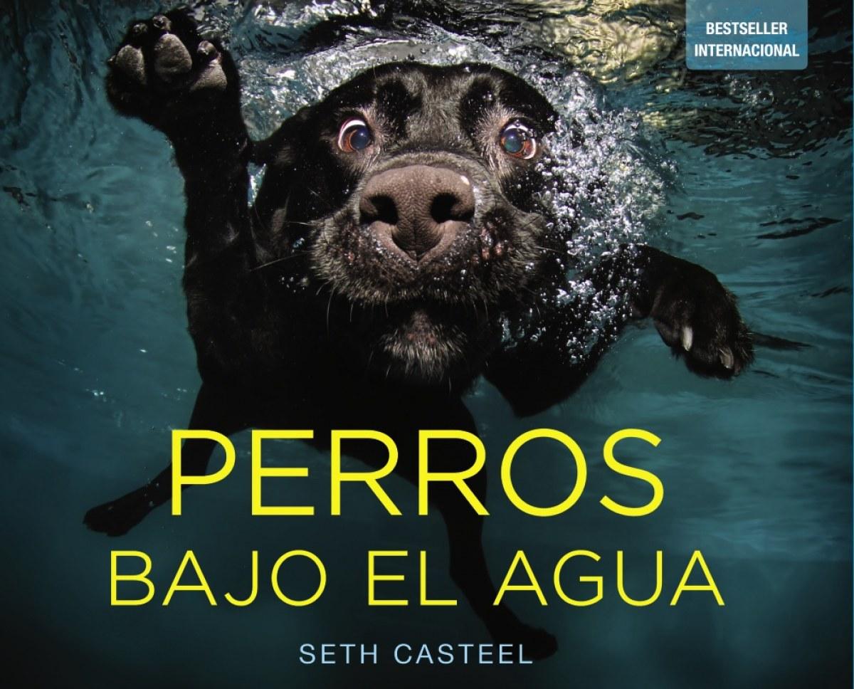Perros bajo el agua 9788441534612