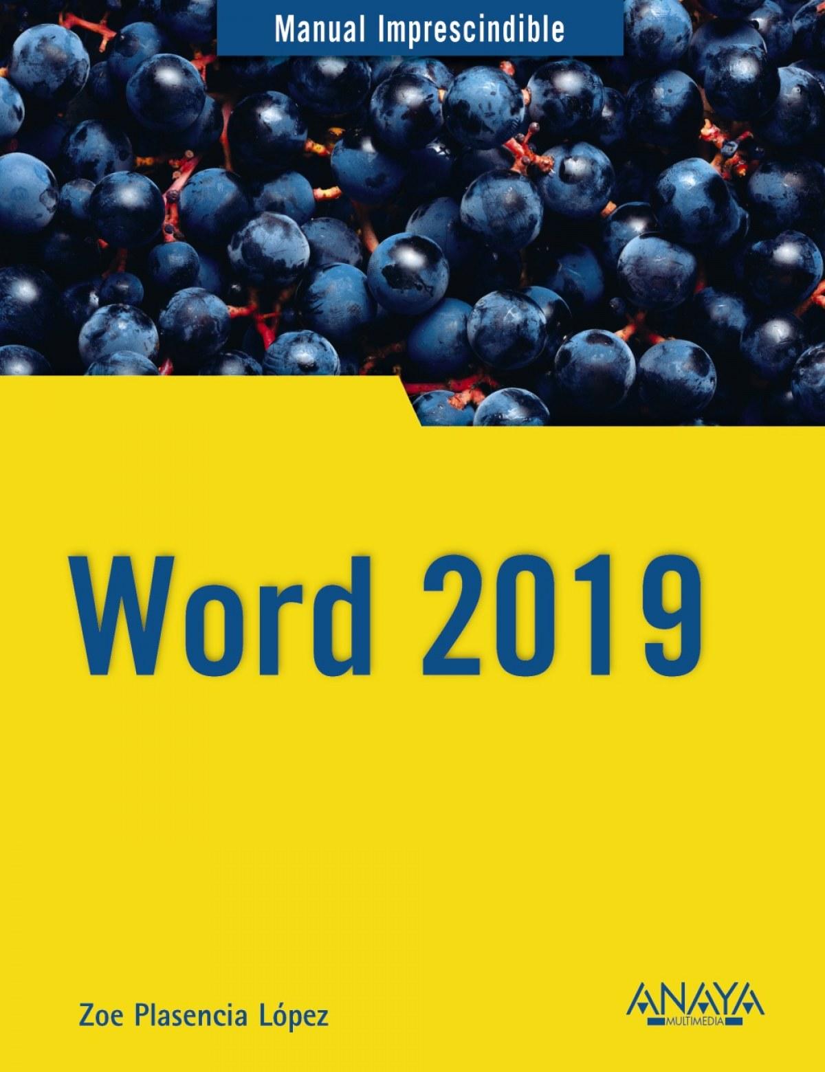 WORD 2019 9788441541146