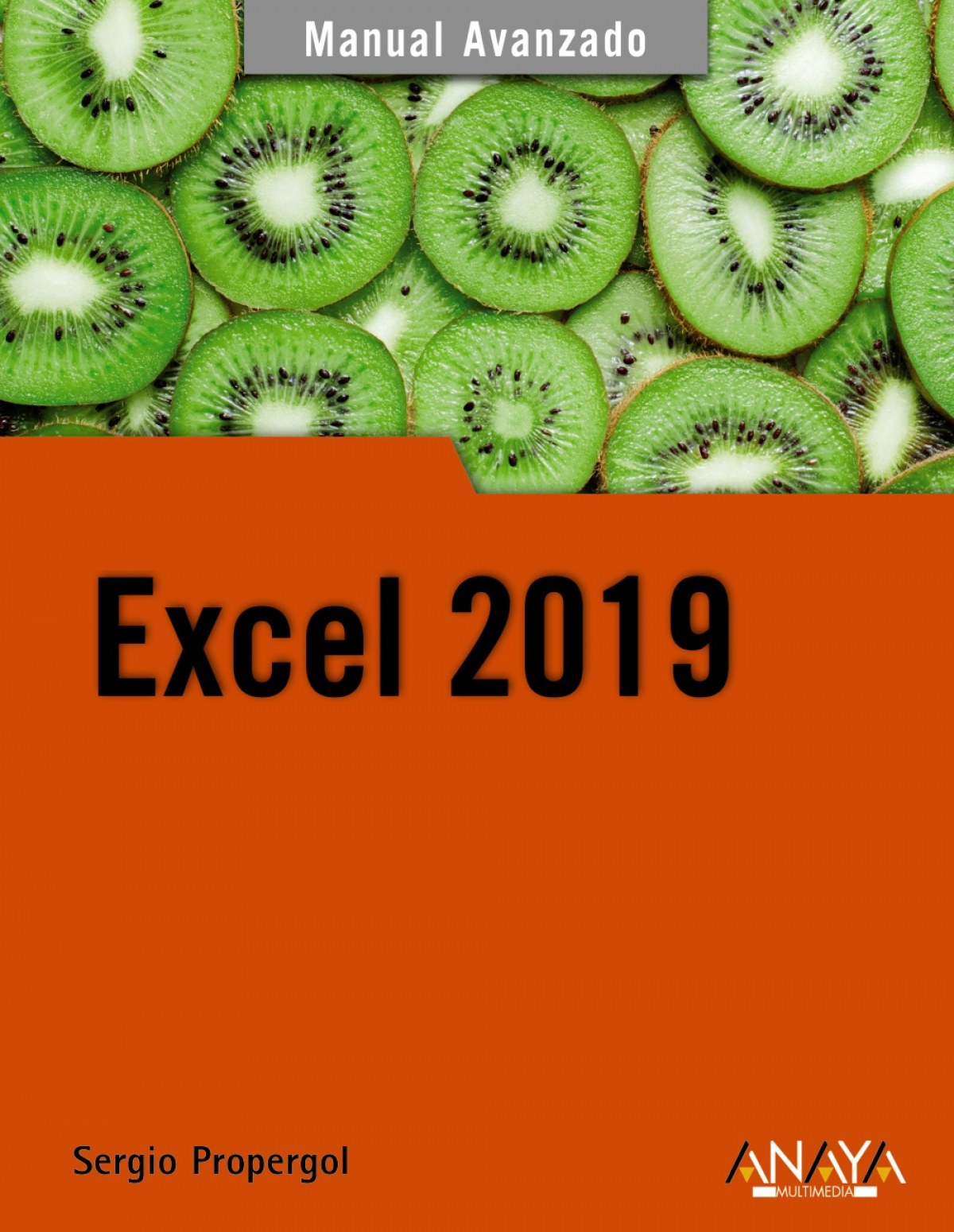 EXCEL 2019 9788441541153