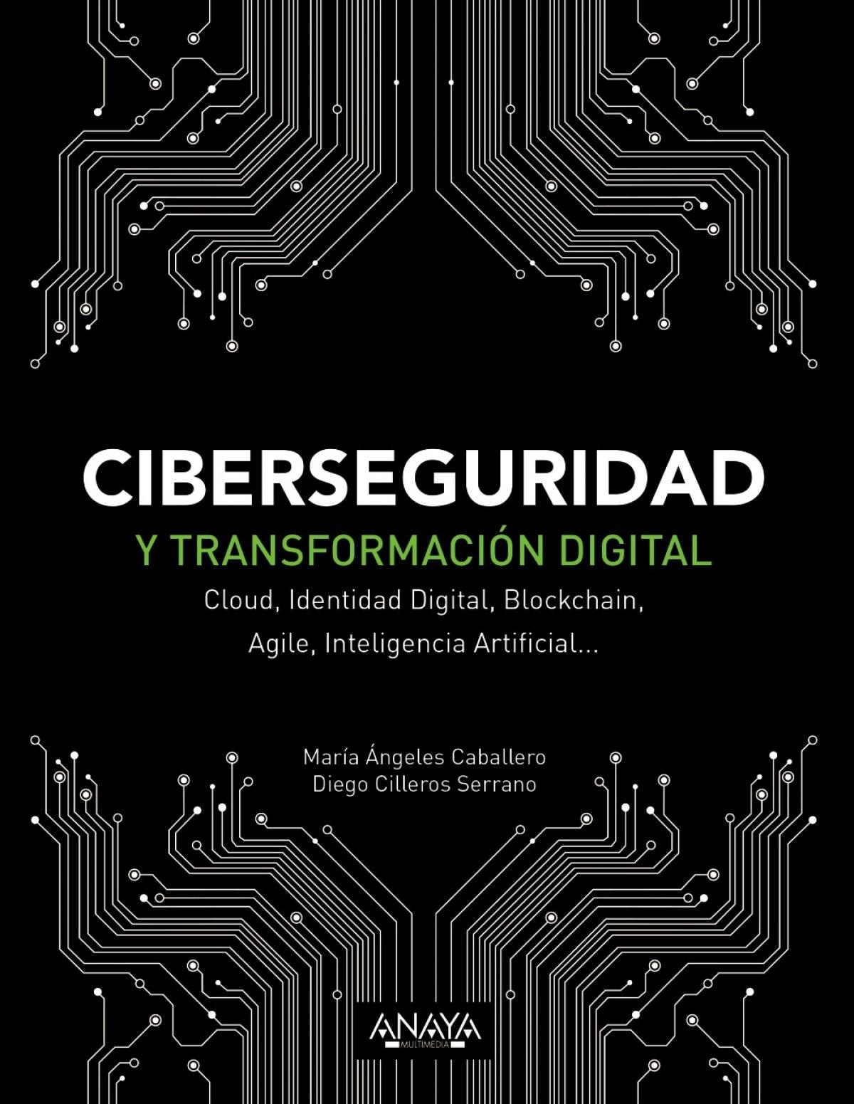 CIBERSEGURIDAD Y TRANSFORMACIÓN DIGITAL 9788441541627