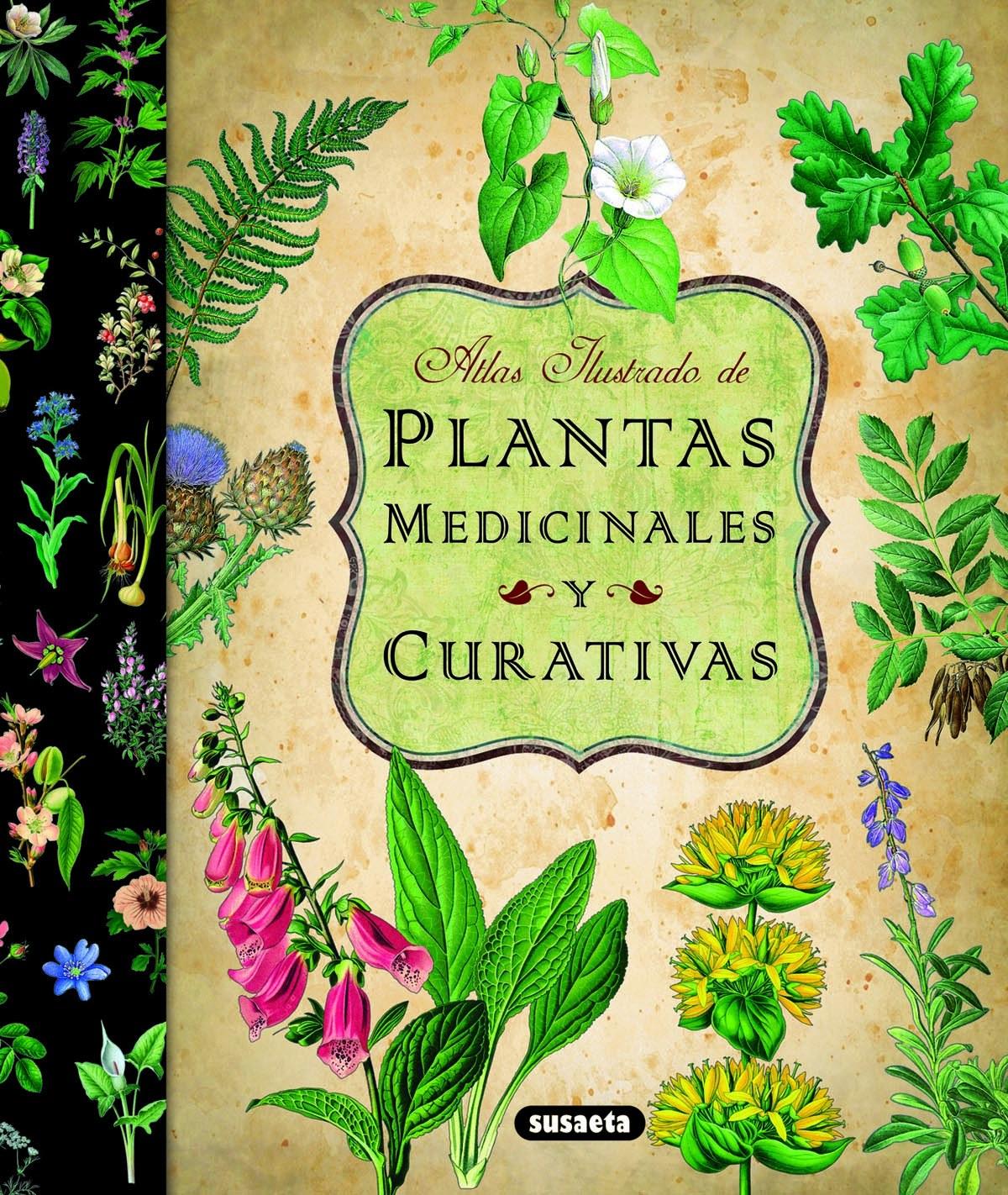 Atlas ilustrado de las plantas medicinales y curativas 9788467712575