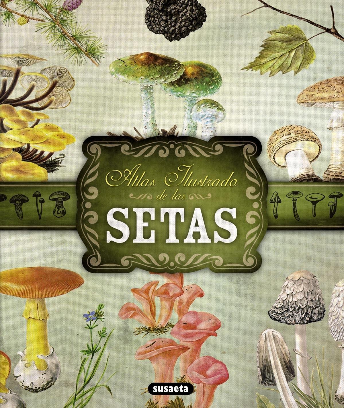 Atlas ilustrado de setas 9788467722871