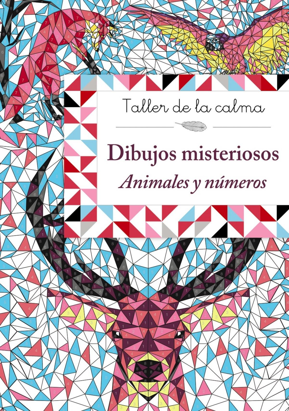 DIBUJOS MISTERIOSOS 9788469624135