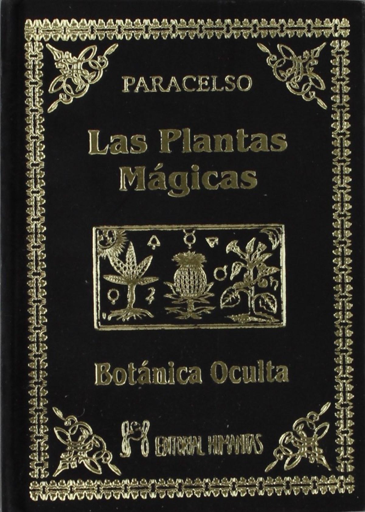 Las plantas mágicas 9788479100377