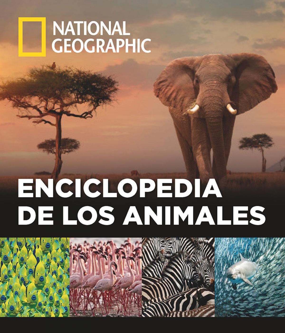 ENCICLOPEDIA DE LOS ANIMALES 9788482986432