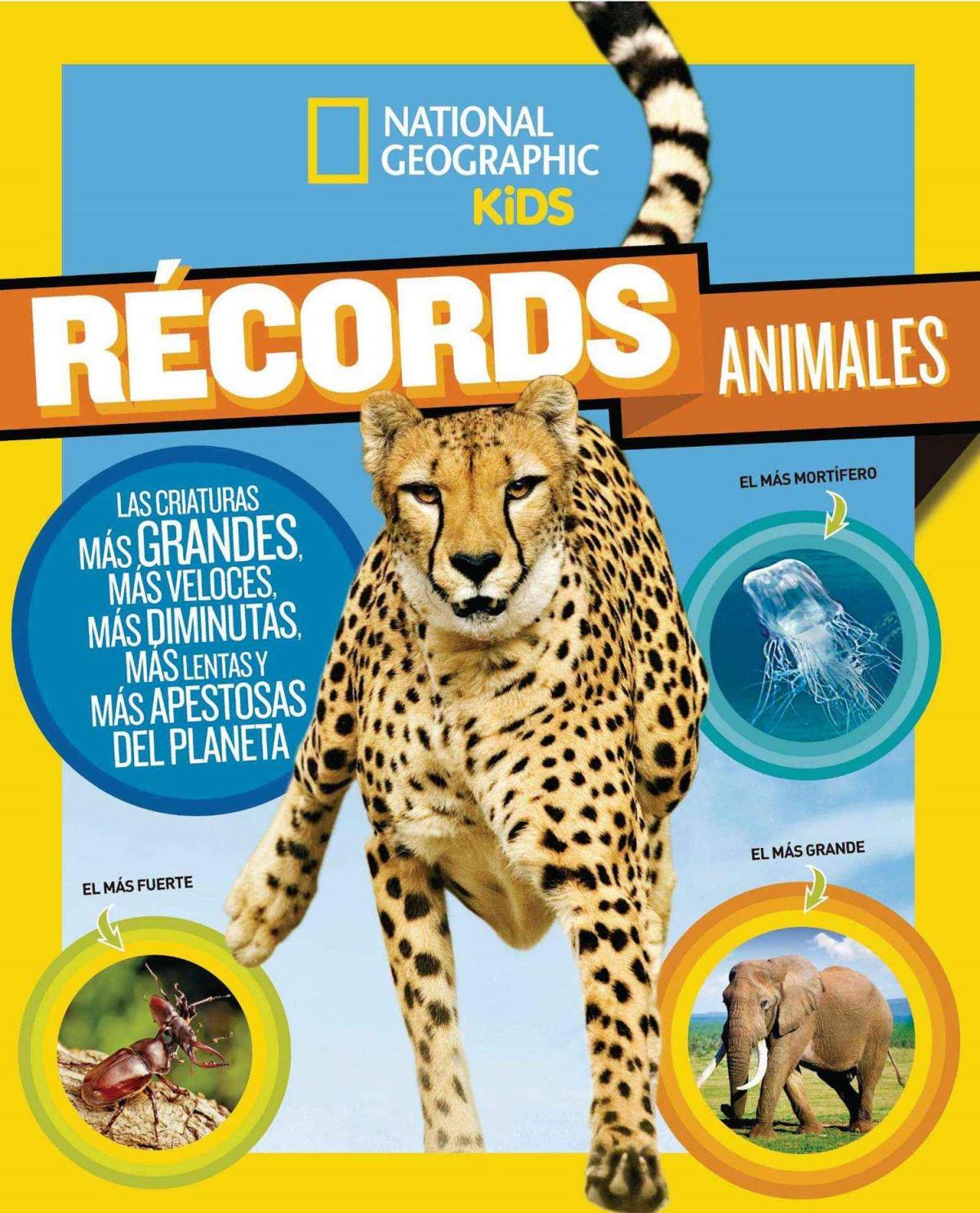 RECORDS ANIMALES 9788482987163