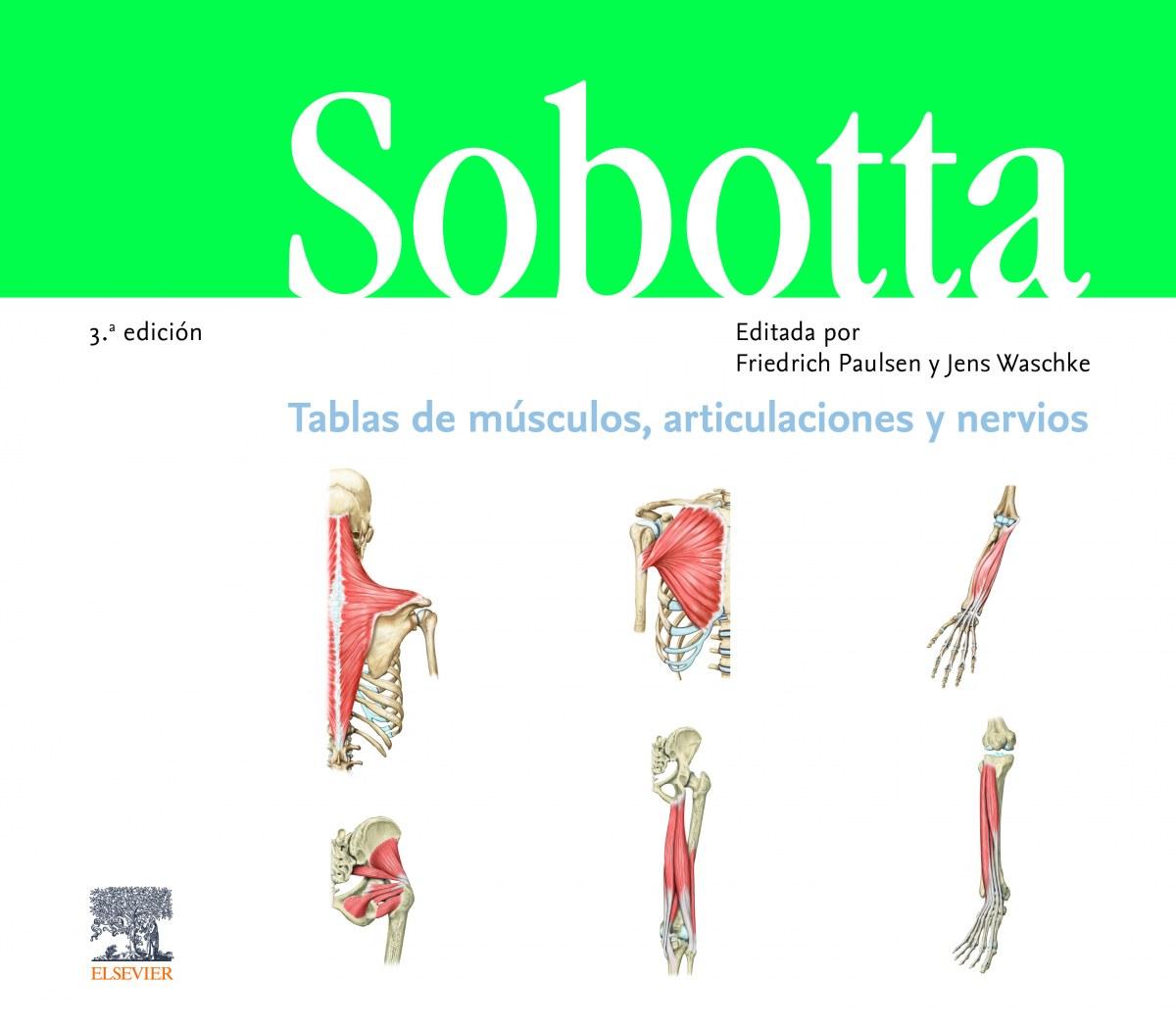TABLAS DE MUSCULOS, ARTICULACIONES Y NERVIOS 9788491135425