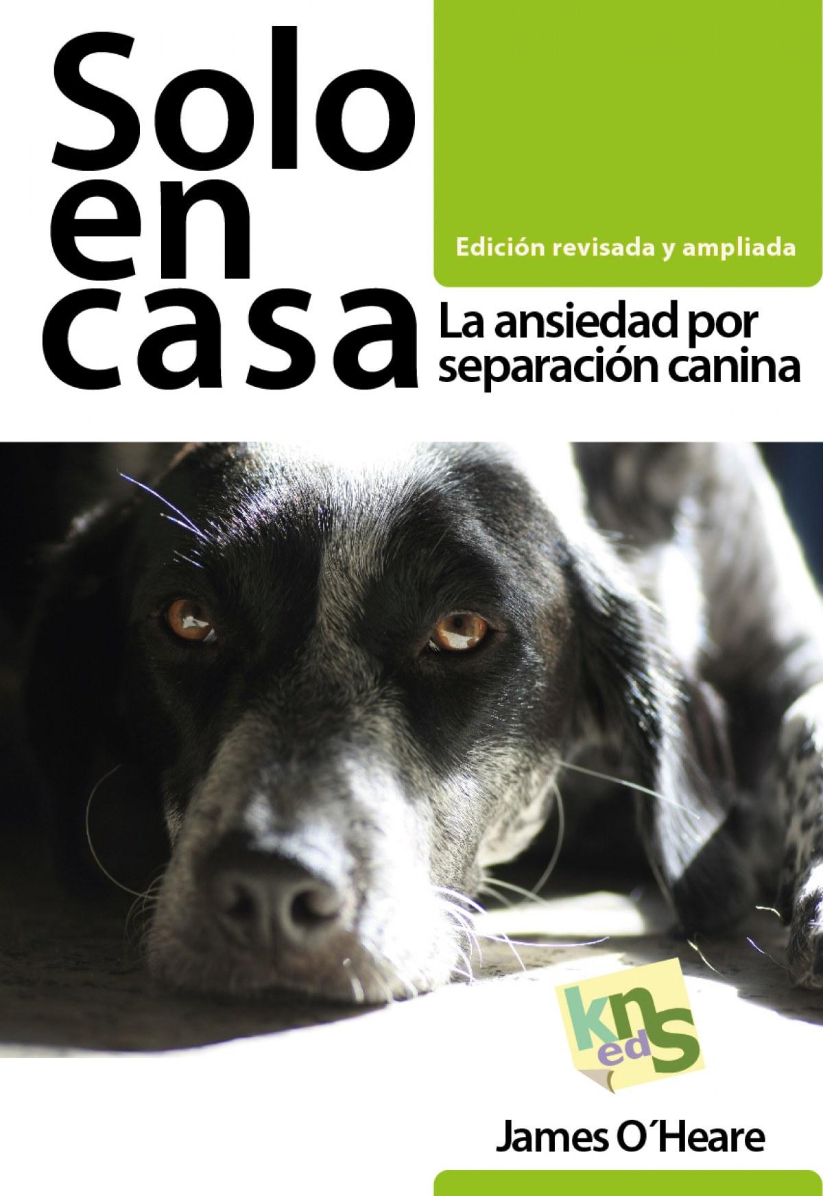 SOLO EN CASA 9788494410949