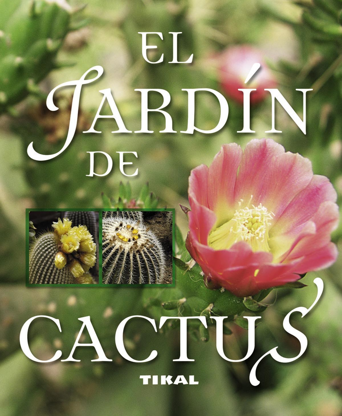 El jardin de cactus 9788499281476